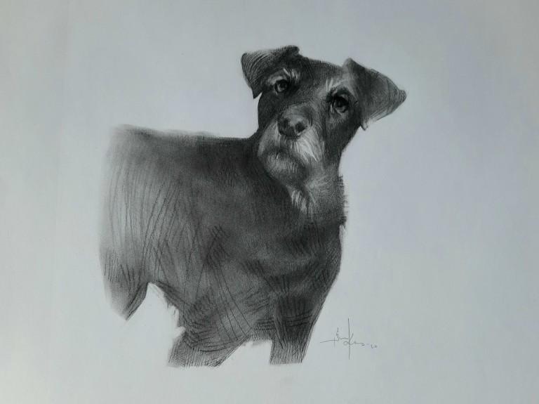 Kunnas Dog 2020 4
